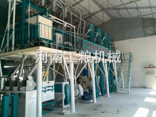 河北衢州50吨玉米加工机械安装案例